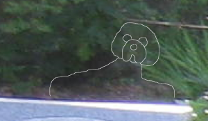 Dog Outline